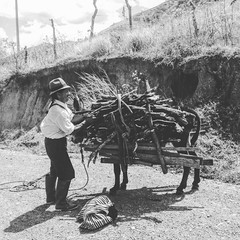 Life in Southern Ecuador in the village of Vilcabamba is simple for many.