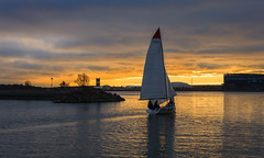 It's never too late to go sailing (Antti Tassberg) Tags: 50mm audi auringonlasku aurinko autumn boat fall kaivari kaivopuisto lens meri park prime puisto purjehdus purjevene sailing sailingboat sea sun sundown sunset syksy vene yacht helsinki