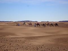 013-Maroc-S17-2014-VALRANDO (valrando) Tags: sud du maroc im sden von marokko massif saghro et dsert sahara erg sahel