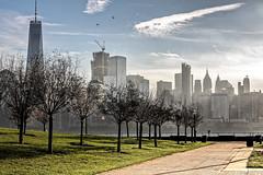 Dcouverte de Manhattan (Lucille-bs) Tags: amrique usa new york libertystatepark arbre architecture manhattan newjersey matin jerseycity