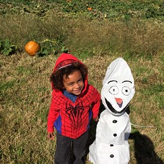 "Anthony Beyer pumpkin4 • <a style=""font-size:0.8em;"" href=""http://www.flickr.com/photos/95217092@N03/15249736903/"" target=""_blank"">View on Flickr</a>"