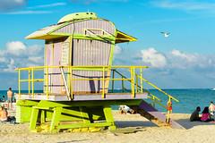_DSC5551.jpg (jochen.bogomiehl) Tags: life green beach station yellow nikon florida guard d7100