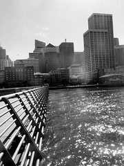 SF Buildings and Water (shaire productions) Tags: ocean sf sanfrancisco city blackandwhite water bay pier downtown skyscrapers picture photograph wharf metropolis railing imagery