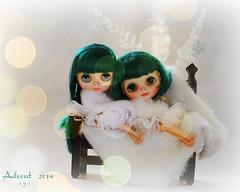 Christmas Cuddles ...