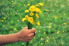 bring me flowers (miaagostini) Tags: flowers green love yellow holding friendship sister ring present colourful foryou simble mbpicture
