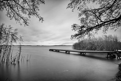 Brviken (jarnasen) Tags: longexposure november trees sea sky blackandwhite bw seascape reed nature water clouds mono moody fuji wind sweden outdoor jetty smooth wideangle surface le nordic sverige scandinavia plank norrkping stergtland ndfilter lakescape ultrawideangle woodenjetty brviken xt1 nd1000 leefilters bigstopper fujifilmxt1 samyang12mmf2 jarnasen jrnsen