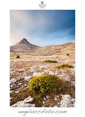 Iceland Dreaming (Simone Angelucci) Tags: sunset italia tramonto monte abruzzo gransasso bolza
