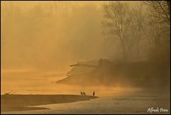 Golden morning (alfvet) Tags: sunrise ticino alba fiume ngc npc sole greatphotographers parcodelticino goldencolors platinumheartaward veterinarifotografi