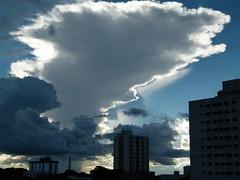 (IgorCamacho) Tags: sunset summer brazil sky cloud storm paraná brasil céu southern cielo nubes tormenta verão nuvem sul anoitecer