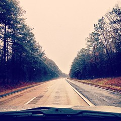 It's like I'm driving through the #Pinelands in #Jersey but we're in #Virginia instead. #WaitWhereAmI #ThisLooksOddlyFamiliar #NotQuiteHomeYet (Aubs.Aubrey.AJ) Tags: square nashville squareformat iphoneography instagramapp uploaded:by=instagram