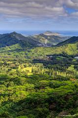 Nuuanu Pali Lookout (JohnWill1970) Tags: usa hawaii oahu lookout hdr palilookout nuuanupalilookout