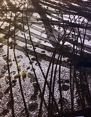 The parking lot taffic (Beth Reynolds) Tags: snow storm lines night pavement patterns parking tracks footprints tire textures