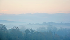 Morning mist over Midhurst, West Sussex (Explored) (Simon Verrall) Tags: november trees mist dawn westsussex valley midhurst morningmist 2014 riverrother cowdray thesouthdowns