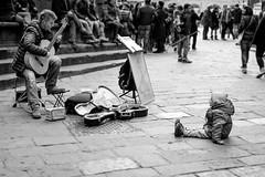 Musica. (FilippoMarchi) Tags: italia uomo musica firenze toscana chitarra bambino