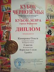 Дипломы Ольги Бочкаревой (12)