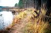 95060016 (Kirill Gutin) Tags: classic river kodak russia voigtlander bessa shore 100 nokton 3514 ektar r2a