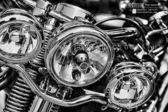 Harley Davidson detail©immaginEmozioni Photography (immaginEmozioni Photography) Tags: street white black detail classic blanco monochrome wheel sport metal bulb speed canon skull lights blackwhite spring chopper ride symbol details negro style bn harley special rushmore motorbike chrome harleydavidson moto motorcycle bulbs biker trike limited davidson softail bianco sportster nero 黑白 bianconero touring plating motocicleta status motorrad motorcykel dyna chromium motocicletta 白黒 cvo mótorhjól чернобелое motorfiets أبيض motorland وأسود изображение motorkerékpár immaginemozioni motorcikl