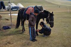 Kyrgiz horse (e-Shard) Tags: road travel viaje boy horses horse boys children caballo caballos asia fuji child silk journey yurt silkroad fujifilm chico kyrgyz centralasia nois kyrgyzstan seda chicos nens cavall cavalls naryn songkul exussr viatje sonkul excccp  yurtcamp rutaseda fujifilmx  darktable fujifilmx100 fossphotography linuxphotographer freesoftwareedit ossphotography