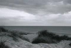 Düne (Turikan) Tags: strand denmark stand mju olympus cm dev 100 agfa apx düne caffenol
