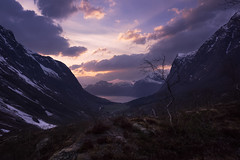 Thank You! (Ole Petter Rust Photography) Tags: sunset sky mountain mountains tree nature forest trekking landscape outdoors scenery view outdoor hiking sonyalpha springclouds