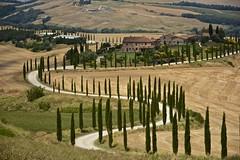 Heaven is Tuscany (Antonio Cinotti ) Tags: landscape paesaggio toscana tuscany italy italia siena hills colline campagnatoscana cretesenesi asciano nikond7100 nikon d7100 rollinghills nikon1685 summer baccoleno cypress cipressyni
