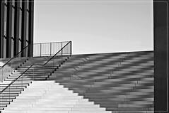 minimalistisch (friedrichfrank1966) Tags: bw monochrome stairs germany hyatt railing dsseldorf rahmen stufen medienhafen gelnder