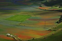 Castelluccio (kmclaudio) Tags: pentaxart castelluccio norcia umbria colori campagna fiori luce ombra atmosfera