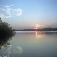 Summer Dip (BunnySafari) Tags: yashicamat124g summerdip summer sunset kodakporta tlr june2016 film guelphlake fpp