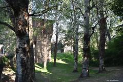 Spilamberto Rocca Rangoni (Paolo Bonassin) Tags: italy emiliaromagna spilamberto roccarangoni castle castelli rocche architettura architecture capitalsarchitecture capitelli capitals