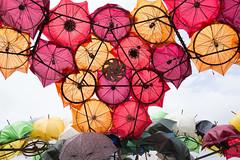 Umbrella pavilion (vpickering) Tags: newyorkcity governorsisland izaskunchinchillaarchitects organicgrowth umbrellas umbrella