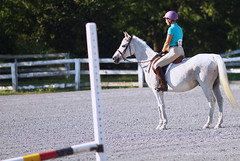 IMG_2548 (SJH Foto) Tags: horse show rider