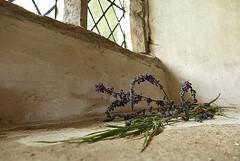 Lavender (Travelling Postie) Tags: chapel odda lavender window light daylight windowsill plant edge forgotten panasoniclumixfz1000