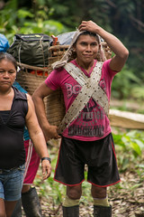 Guilherme.Gnipper-0263 (guilherme gnipper) Tags: picodaneblina yaripo yanomami expedio expedition cume montanha mountain wild rainforest amazonas amazonia amazon brazil indigenous indigena people