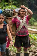Guilherme.Gnipper-0263 (guilherme gnipper) Tags: picodaneblina yaripo yanomami expedio expedition cume montanha mountain wild rainforest amazonas amazonia amazon brazil indigenous indigena people