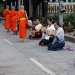 129. Laos. Luang Prabang. Cérémonie des offrandes aux moines, au lever du jour thumbnail
