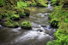 160524_163552_CB_0344 (aud.watson) Tags: europe czechrepublic bohemia decindistrict hrenska riverkamenice kamenicegorge edmundgorge gorge ravine river water rocks rockformation cliffs