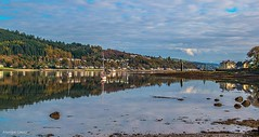 reflections on the Holy Loch (MC Snapper78) Tags: scotland nikond3300 landscape dunoon argyllandbute holyloch firthofclyde sandbank reflections reflecting reflection marina marilynconnor