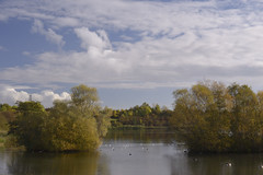 4_FarcetParkJpeg_DSC1130 (Kung Fu Jim) Tags: nature water sky trees