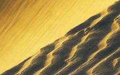 viento y arena (alestaleiro) Tags: jeri jericoacoara arena sand dunas dunes cear minimalismo viento grains granos wind textures textura sabbia areia desert deserto desierto texturas brasil brazil vero nordeste vent vento alestaleiro abstract dune testures