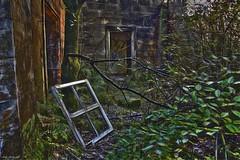 Abandoned Places (Billy McDonald) Tags: hdr abandonedplaces derelict lennoxcastle hospital glasgow