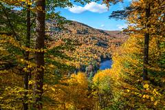 Automne éclatant (sviet73) Tags: canada jacquescartier parc québec fôret arbre automne onlythebestofflickr magicmomentsinyourlife worldwidelandscapes