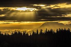 rainier sunlight 1 (David Montesino) Tags: longbranchwashington keypeninsula mountrainier autumn tacoma washington usa