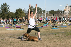 """Yoga GWR-CD-012515 (274) • <a style=""""font-size:0.8em;"""" href=""""http://www.flickr.com/photos/25952605@N03/15756221403/"""" target=""""_blank"""">View on Flickr</a>"""