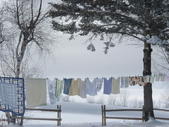 Parfum de fraîcheur garanti (Amiela40) Tags: winter hiver fresh linge frais clothe serviette parfum vêtement cordeàlinge séchage fraîcheur wibter