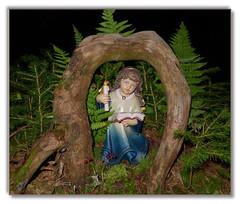 Engel gibt es berall (Mariandl48) Tags: austria kerze engel wald bume steiermark wenigzell sommersgut