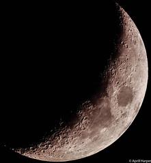 23feb15 lunar c (Wyld-Katt) Tags: moon crescent lunar 1stquarter