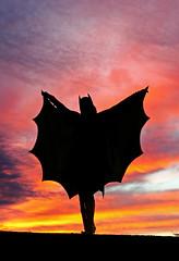 Christina Johnson as Batgirl Sunset Silhouette! (gbrummett) Tags: sunset colors silhouette amazing colorful christina johnson stunning batgirl cosplayer img2436