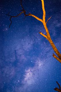Milky Way 35mm