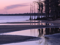 Louisiana Beach (Lana Gramlich (is back)) Tags: winter sunset lana beach water reflections catchycolors landscape louisiana cypress mandeville gramlich canoneos5d sttammanyparish fontainebleaustatepark lanagramlich dailynaturetnc15 feb192015