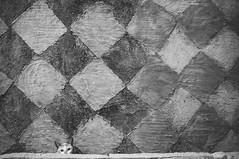 Untitled (The.Yellow.Jacket) Tags: street white black monochrome photography mono asians fuji philippines streetshots streetphotography manila fujifilm p blacknwhite pasay untitled daan streetphotos x100 streetwalkers streetphotographers xphotographers fujifilmx100 litratistasadaan x100s streetsinmanila asianstreetphotos